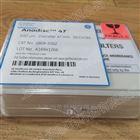 沃特曼AAO膜孔径0.02um无机膜