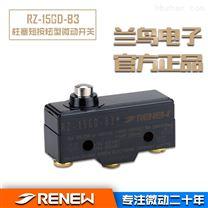 广东地区RZ-15GD-B3兰鸟RENEW厂家直销