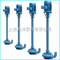 NL型立式污水泥浆泵-上海泥浆泵生产厂家