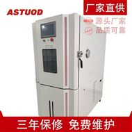 ASTD-GDW-225高低温试验箱定制型