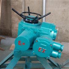 DZW防爆型电动装置