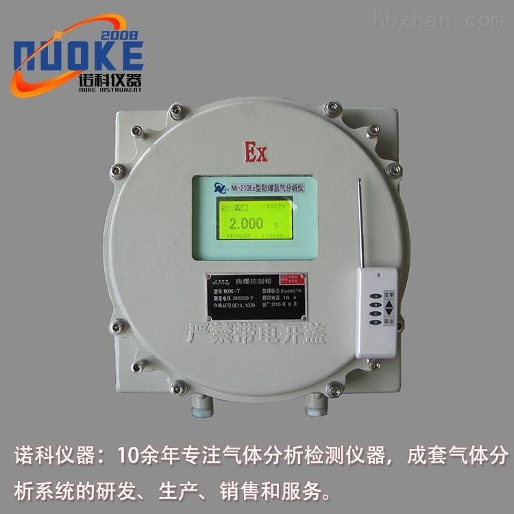 防爆式氩气分析仪