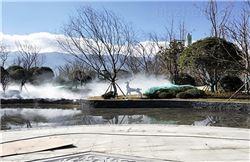 FGL-YLZW成都园林景观造雾生产厂家
