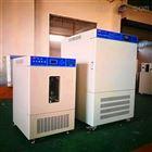 SHP-150广东细菌培养箱生产厂家