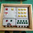BXMD8060防爆防腐照明动力配电箱带浪涌保护器