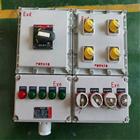 BXD51-10/KXD上进下出箱防爆动力配电箱