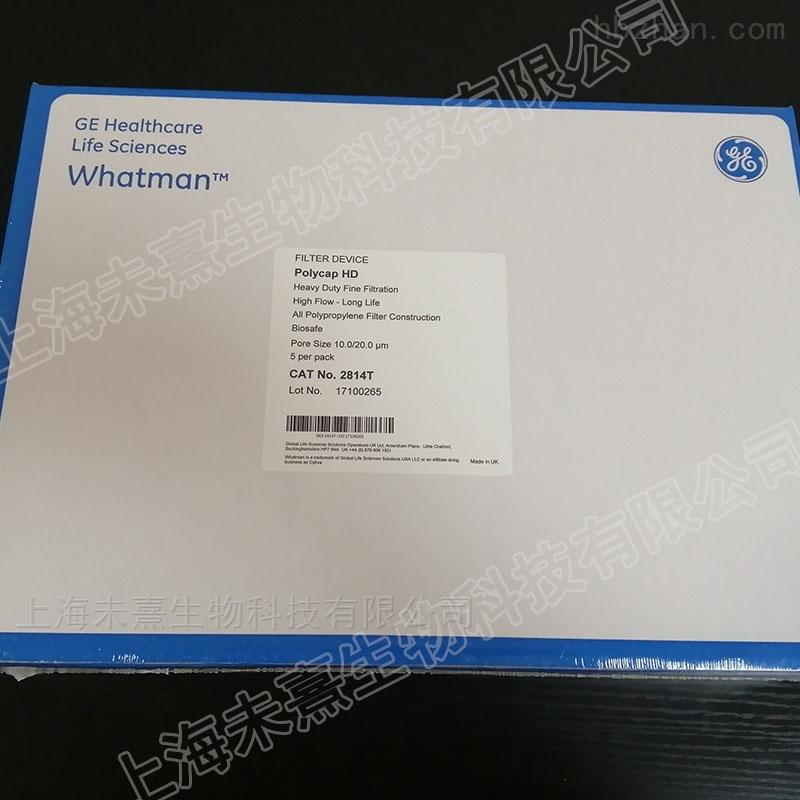 英国沃特曼Polycap HD 150囊式过滤器