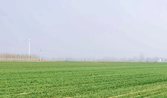 国家能源局:2020上半年光伏发电和风电并网运行情况公示