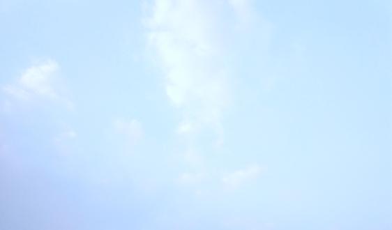《溫州市揚塵污染防治管理辦法(修訂)》(公開征求意見稿)