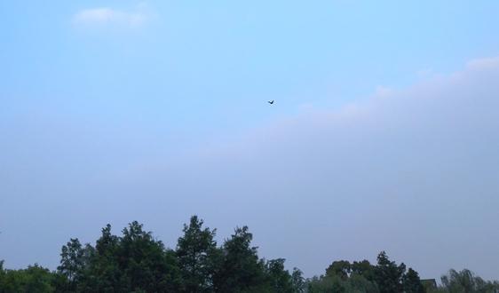 《杭州市扬尘排放控制标准(征求意见稿)》