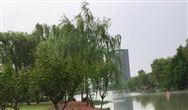 """陕西发布重点排污单位主要污染物超标和超总量""""黄红牌""""办法"""