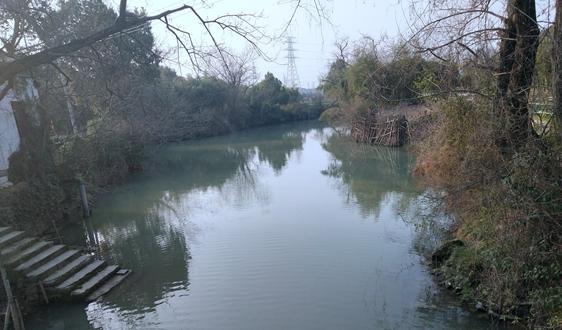 """《浙江省农村生活污水处理设施""""站长制""""管理导则(征求意见稿)》"""