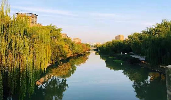 浙江發布丨1-8月污染防治攻堅戰成績單出爐