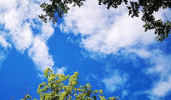 環保做得怎么樣? 外交部回應:天藍不藍,大家都看得見