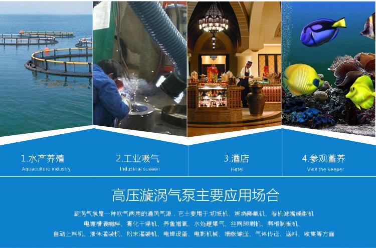 2.2kw环形高压风机 中国台湾RB-033环形风机生产厂家 RB-033漩涡风机 环形鼓风机 环形高压风机示例图15