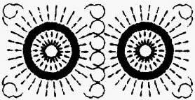长方形池(长:宽<2:1)
