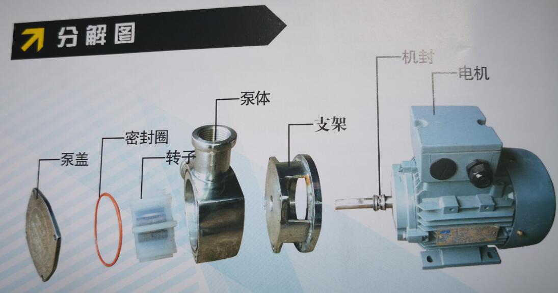 小型化糞池污水泵結構圖