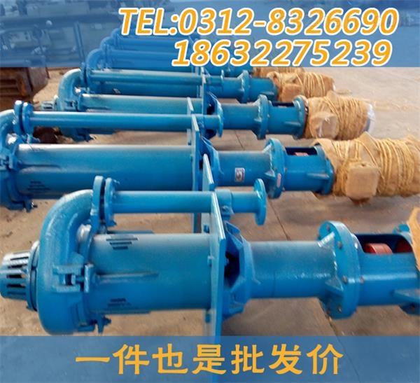 <strong><strong><strong><strong>50TL-A20脱硫泵 <strong></strong></strong></strong></strong></strong>