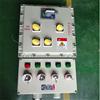 BDZ52120A4P防爆塑壳断路器开关箱带漏电保护